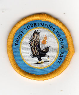 Indian Air Force Air Defence Flight patch MiG-21 era
