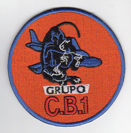 Argentinian Air Force patch Grupo de Caza-Bombardeo 1