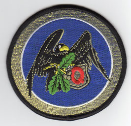 Swedish Air Force patch 1 Division / F17 Wing JAS39C Gripen