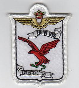 Italian Air Force patch 161° Squadriglia / 86° Gruppo Atlantic period