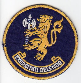 South African Air Force patch 85 Combat Flying School