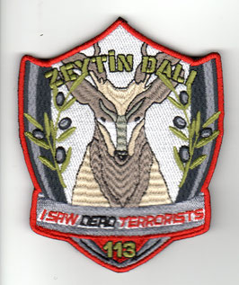 Turkish Air Force patch 113 Filo F-16C/D Eskisehir Anti-Terrorist Operation Zeytin Dali