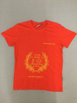 Sola-Shirt 2017