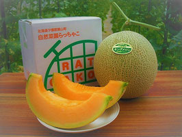 【無農薬・無化学肥料】完熟朝採りキングメロン 優秀品1玉(1.4㎏~)