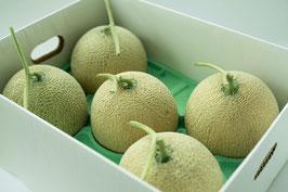 【無農薬・無化学肥料】完熟朝採りキングメロン 良品 8㎏ (4~6玉)