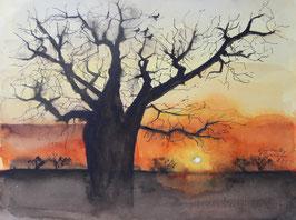 Sonnenuntergang in den Kimberleys Australien