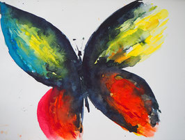 bunter Schmetterling