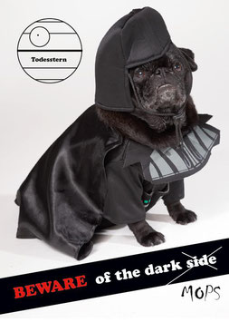 "Postkarte Mops ""Beware of the dark Mops"""