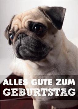 """Postkarte Mops """"Alles Gute zum Geburtstag"""""""
