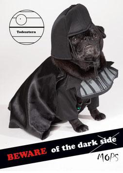 "Postkarte Mops ""Beware of the dark Mops"""