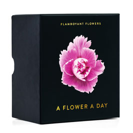 Flamboyant Flowers / A flower a day