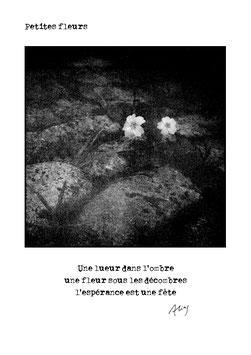 Carte - Petites fleurs