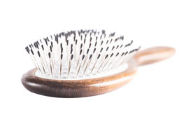 Glanzmacher Daily Brush