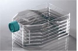 NEST - 5-Schicht-Zellkulturflaschen TC