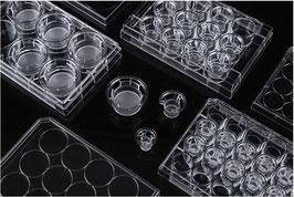 Transparenter PET-Membran Zellkultur Einsatz, 100mm Dish, Porengröße 3, Volumen 13 ml