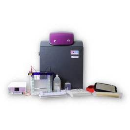 Komplettes Maxi-Blotting-Paket mit chemiPRO