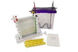 VS20WAVE Maxi vertikales Elektrophoresesystem