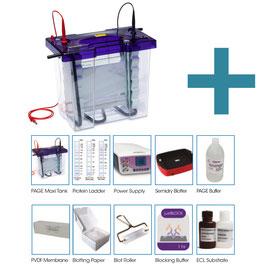 Maxi PAGE und Western Blotting Kit mit Reagenzien