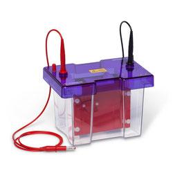 OmniPAGE Blot Mini Hochleistungs-System mit hoher Intensität 10 x 10 cm