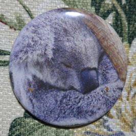 Koala-3 Taschenspiegel