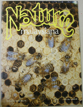Nature malaysiana Vol.3 No.1(1978年1月)