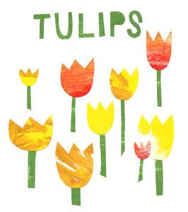»Tulips« - FRAUKNOPP