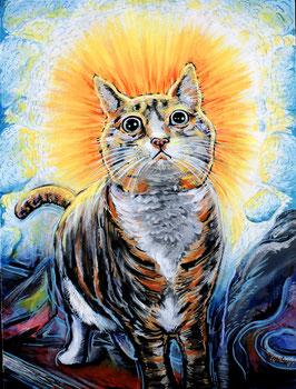 The Enlightened Cat Art Print