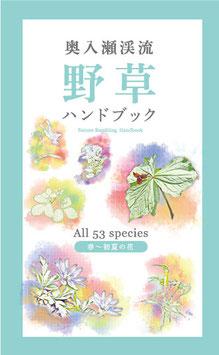 8.野草ハンドブック (春~初夏)