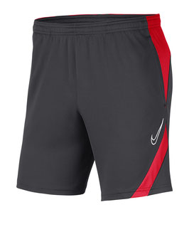 Nike Academy Pro Hose (F062)