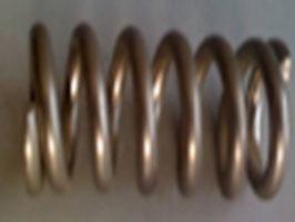 FR0513 Carvingachse-Feder