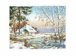 Winterlandschaft Darß