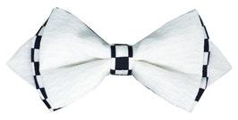Le caméléon intermédiaire blanc
