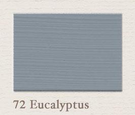 Farbton 72 Eucalyptus