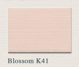 Farbton Blossom K 41