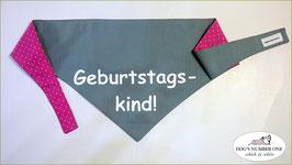 """Wende-Hundehalstuch zum Knoten """"Modell Geburtstagskind pink"""""""