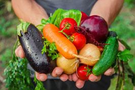 農人たちの野菜たち(2名様分)