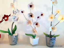 """""""Orchidée"""
