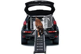 Easysteps - die clevere Hunderampe