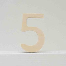 Zahl -5- natur