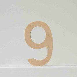 Zahl -9- natur