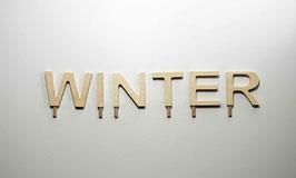 Schriftzug -WINTER-