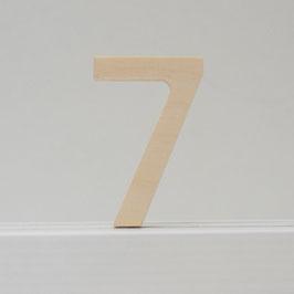 Zahl -7- natur