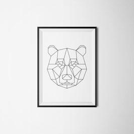 PRINT Bär