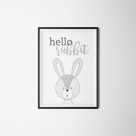 PRINT HELLO RABBIT