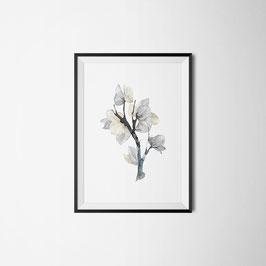 PRINT FLOWER ELEGANT