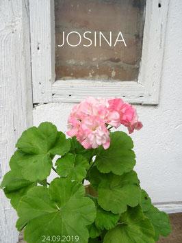 JOSINA