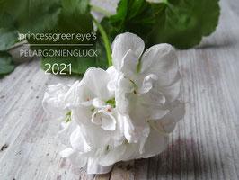 princessgreeneye's PELARGONIEN-Glück -Wandkalender 2021