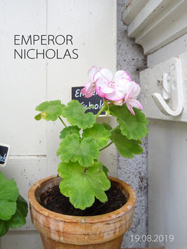 EMPEROR NICOLAS