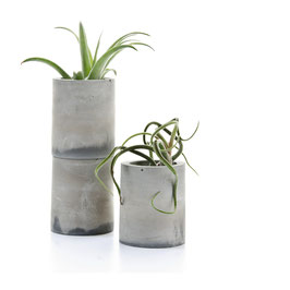 Concrete 'Chimney' Air Plant Holder