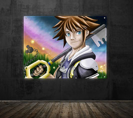 Sora - version sous plexiglass